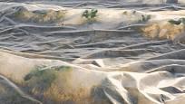 Jahody chráněné textilií