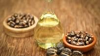 Ze semen se získává olej
