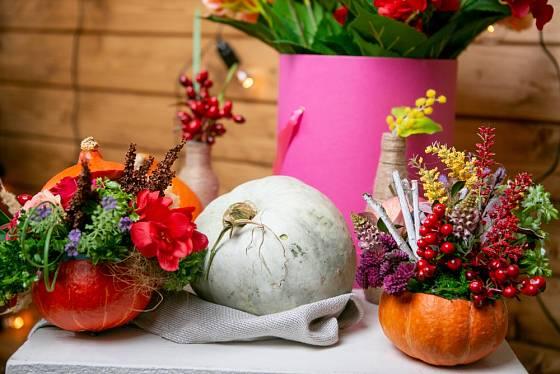 Do vyřezaných a vydlabaných dýní se hodí nejrůznější podzimní květy a plody.