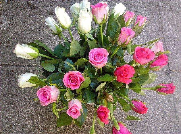 Růže ve třech barvách.