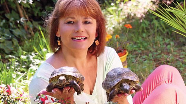Dvě šestnáctileté suchozemské želvy Ivany Andrlové