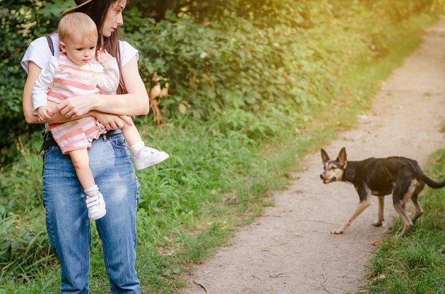 Pokud nevím, jak bude neznámý pes reagovat, raději dítě chráníme.
