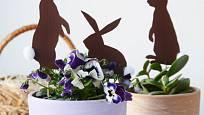 Papíroví zajíčci oživí květináče