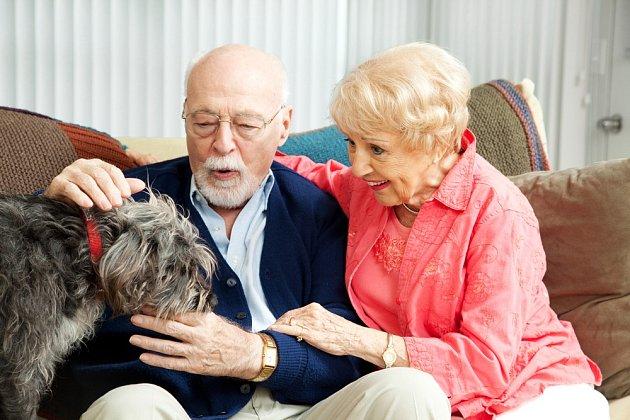 V době koronaviru jsou domácí mazlíčkové nadmíru důležití.