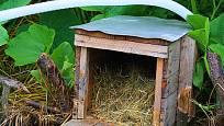 úkryt pro ježky