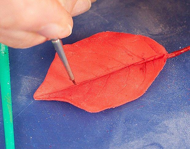 Práškovým barvivem také zdůrazníme všechny žilky