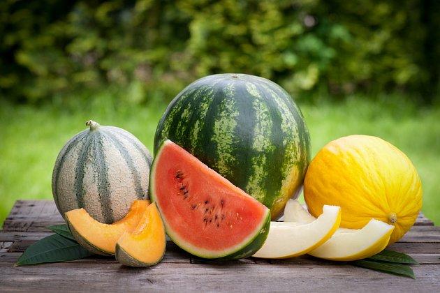 Zleva: meloun kantalupe, vodní a kanárský.