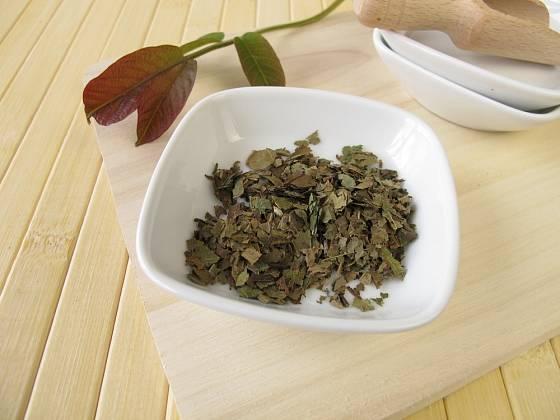 Sušené listy ořešáku královského - Folium juglandis.