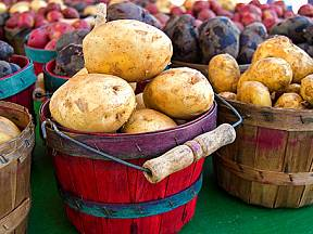 skladování brambor