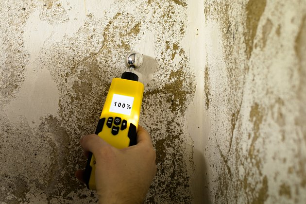 Pozvěte odborníky a nechejte si změřit vlhkost vašich zdí.