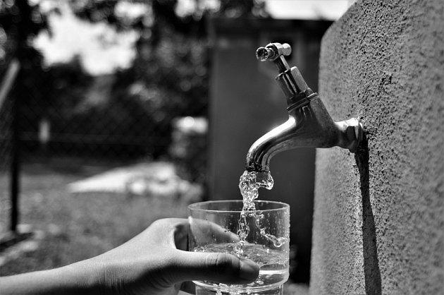 Kohoutková voda je to nejlepší, co můžete svému tělu dopřát.