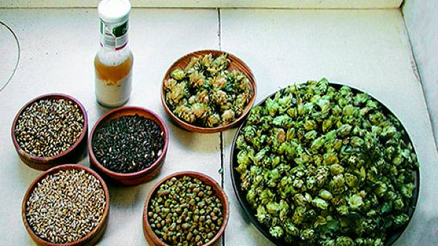 Suroviny pro domácí výrobu piva