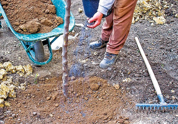 Proč hnojit dusíkatým vápnem