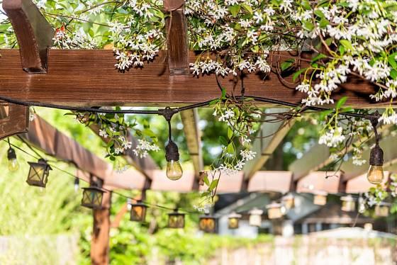 Pergola může kvést od jara do podzimu