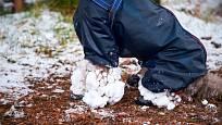 Nalepený sníh na nohách chlupáčů je obvyklý zimní problém.