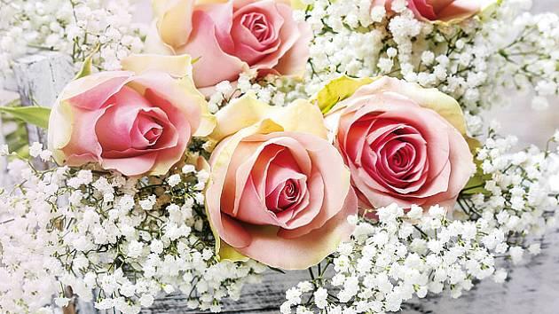 Šater latnatý je velmi cennou květinou k řezu
