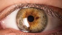 Duhovka každého oko může být trochu jinak zbarvená.