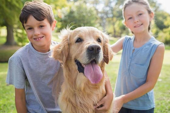 Ideální je, když pes vyrůstá s dětmi od malička.