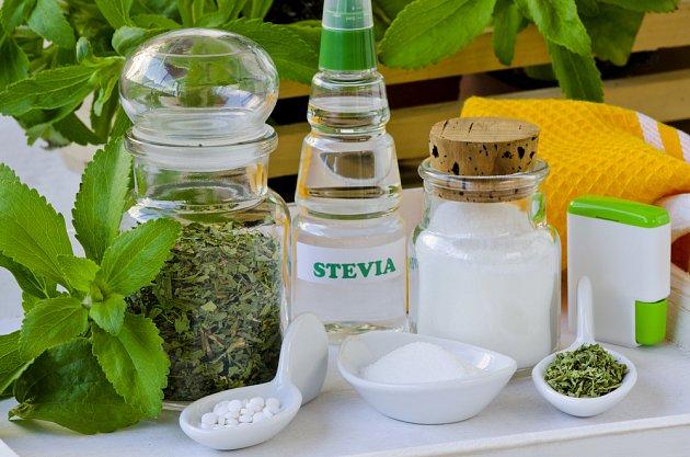 Stevii můžete mít v podobě sušené bylinky, ale i kapek či tabletek.