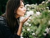 Růže by měly potěšit nejen oko, ale i nos