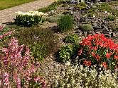 Jaro je v pražské botanické zahradě v Troji plné barev.