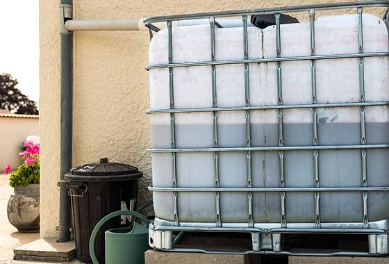 Populární IBC nádrže jsou průhledné a tvoří se v nich řasa