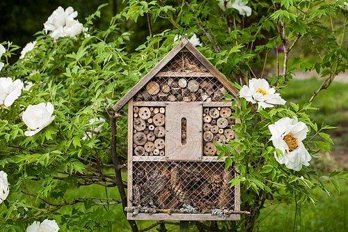 Pěkný hmyzí domeček každé zahradě sluší!