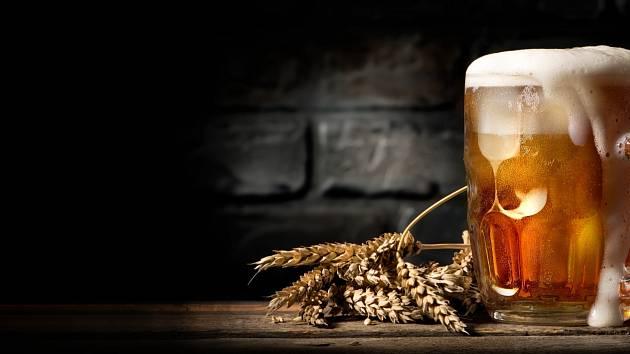 Pivo je nejen národním nápojem Čechů, ale i skvělým pomocníkem v domácnosti či pro udržení krásy