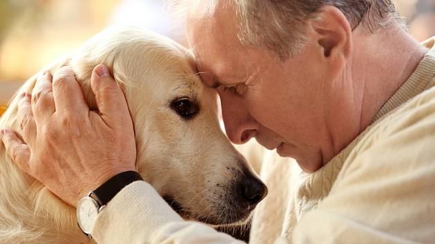 I starý pes může spokojeně žít, pokud se majitel dokáže vcítit do jeho potřeb.