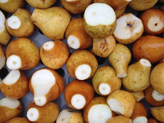 Ovoce pro přípravu kvasu musí být zdravé a kvalitní