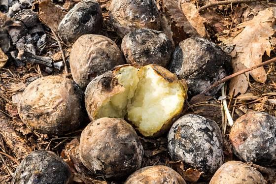 K podzimní klasice patřily brambory pečené v popelu.