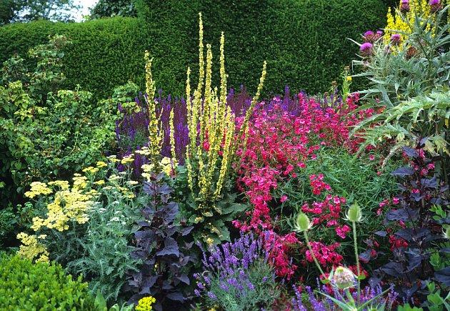 Záhon z trvalek a bylinek kvete po celé léto
