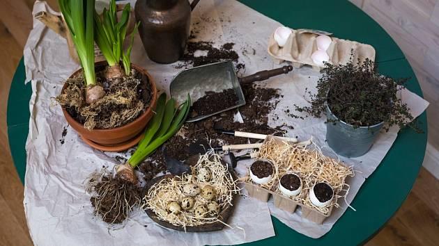 Vaječné skořápky mohou posloužit i jako výživné podhoubí pro květiny