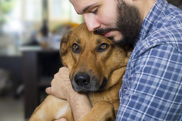 Psi jsou velmi vnímaví, a tak dovedou vytušit nejen špatnou náladu, ale i zdravotní stav svého pána.