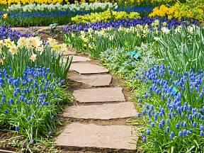 Zahradní chodníčky a pěšinky mohou mít mnoho podob.