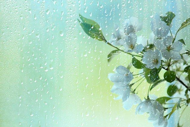 deštivé jaro
