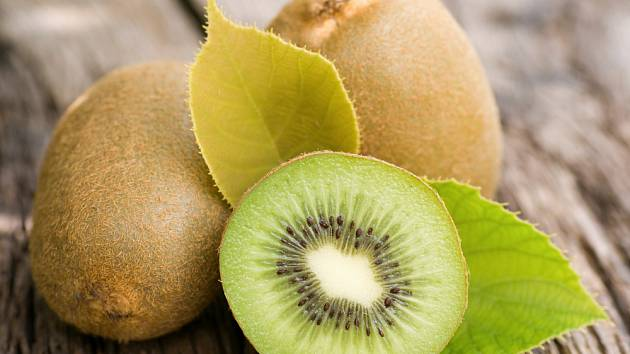 Plod kiwi