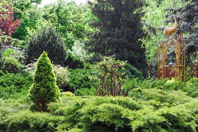 Kreativní využití jehličnanů v zahradě