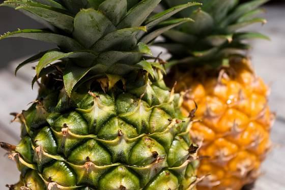 Plody ananasu patří mezi oblíbené ovoce.