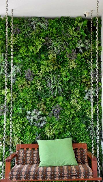 Výběr rostlin přizpůsobte orientaci vegetační stěny.