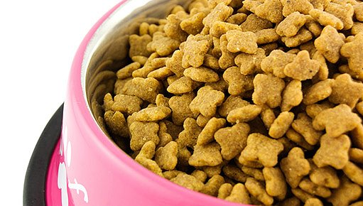 psí krmivo