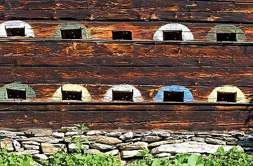 barevně označené vchody do úlu
