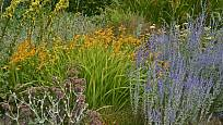 Pestrý letní záhon - žlutě kvetoucí divizny, oranžové montbrécie a modrofialová perovskie.