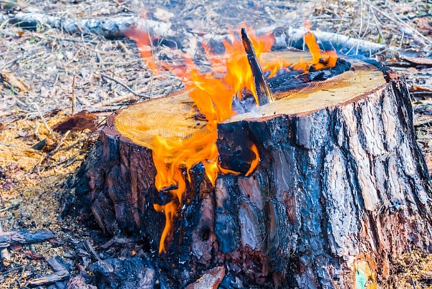 Vypalování pařezu je jednou z těch zdlouhavějších metod