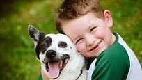 Pro své děti nikdy nevybírejte psa pocházejícího z nevyhovujícího prostředí, takový nemá vtisknutý dostatečně pevný vztah k člověku