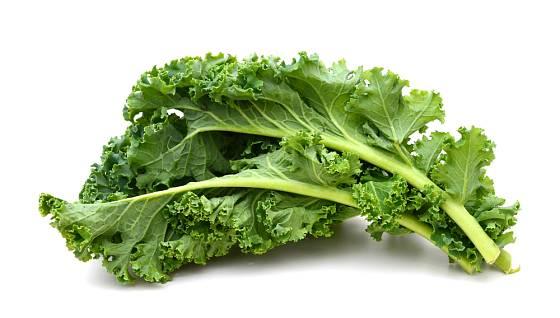 Kadeřávek, anglicky Kale, je v současnosti zejména v USA na vzestupu.