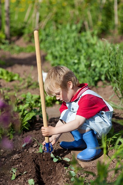 Vypěstujte si zahradníka. Jak motivovat děti k práci na zahrádce?