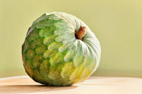 čerimoja, lahodný plod láhevníku