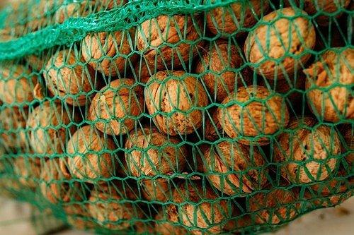 Usušené ořechy umístěte do vzdušných bedniček nebo do síťových sáčků. Nedávejte je na zem, je lepší je zavěsit někam do prostoru.