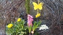 Jarní aranžmá s kvetoucími cibulovinami a motýlem.